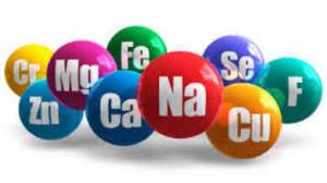 9 Struktur Mineral Dalam Tubuh Manusia