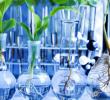Manfaat Biologi di Berbagai Bidang