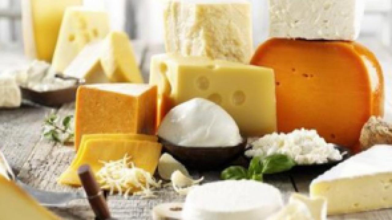 Manfaat Biologi Di Bidang Industri Makanan Dosenbiologi Com